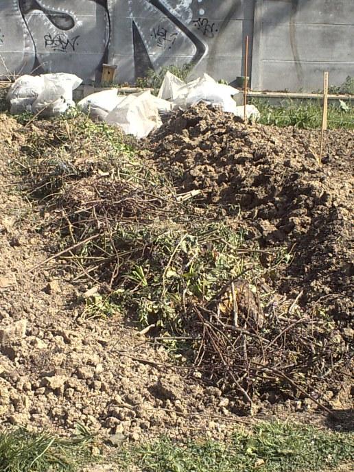 Déchets végétaux dans une fosse